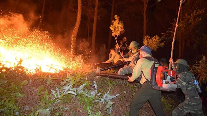 Hàng trăm người dân ở huyện Nghi Xuân (Hà Tĩnh) tham gia dập đám cháy tại rừng phòng hộ /// Ảnh Tân Kỳ